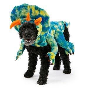 Saxon Costume (Top Paw Dinosaur Halloween Dog Costume XS)