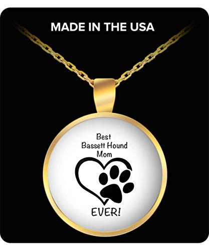 Creator's Cove Bassett Hound Dog Lover Silver Chain Necklace for Women, Gifts for Dog Lovers, Gold Necklace, Pet Parents, Resin Pendant ()