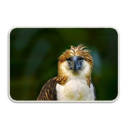 Dick Sidney Door Mat Animal Philippine Eagle Birds Colorful Green Bird Bathroom Rug Inside Floor Mat Gripper Premium Non Slip ()