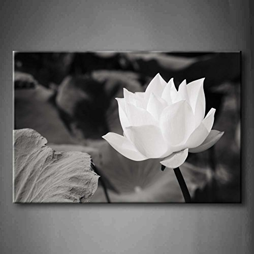 - White Lotus In Basin Wall Art Painting The Picture Print On Canvas Flower Pictures For Home Decor Decoration Gift (Stretched By Wooden Frame,Ready To Hang)