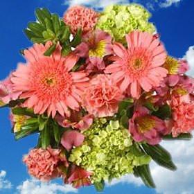 Amazon Globalrose 14 Fresh Cut Flowers Bouquet Lovely