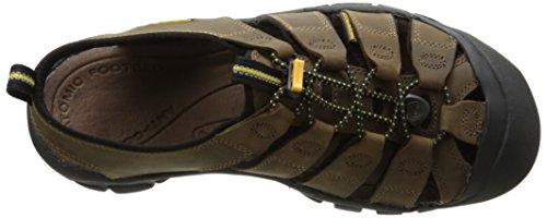Keen ARROYO II 1226-GYTO - Zapatillas de deporte de cuero nobuck para hombre Bison