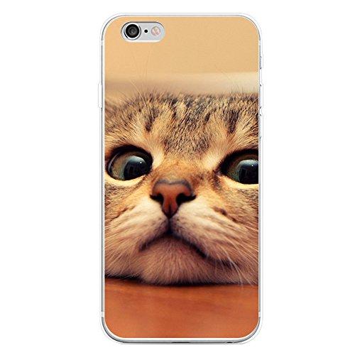 trenton-cute-cat-adorable-pet-phone-case-cover-for-iphone-5c-samsung-galaxy-s7