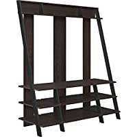 Ameriwood Home Dunnington Entertainment Center for TVs up to 48, Espresso