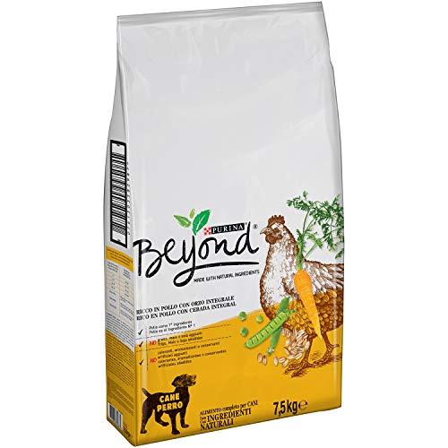 Purina Beyond Pienso Natural Para Perro Adulto Pollo Y Cebada Integral 75 Kg