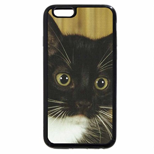 iPhone 6S Case, iPhone 6 Case (Black & White) - A kitten in a basket