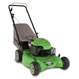 Lawn Boy 10640 20-Inch 6.75-Gross-Torque Briggs & Stratton Gas-Powered Push Lawn Mower