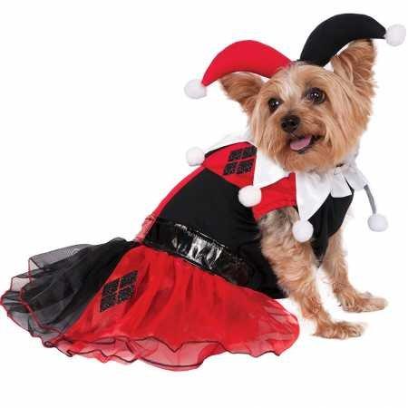 Rubie's DC Comics Harley Quinn Pet Costume, -