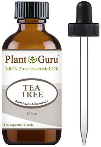 Tea Tree Essential Oil 2 oz 100% Pure Undiluted Therapeutic Grade Extract of Melaleuca Alternifolia for Skin, Body, Hair Growth, Scalp Dandruff, Acne and Aromatherapy Diffuser Humidifier