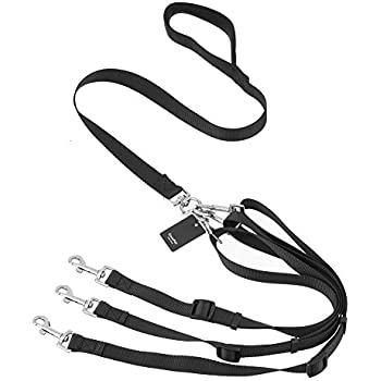 Amazon Com 3 In 1 Dog Leashes For Multiple Dogs