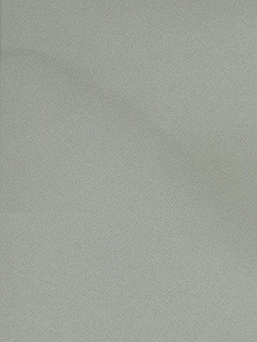 Canson Mi-Teintes Tinted Paper (Sky Blue) - 19 In. x 25 In. 4 pcs sku# ()