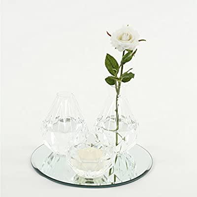 High Table Modern Decorations for Wedding Graduation Koyal Wholesale Cocktail Table Bud Vase Assortment Centerpiece with Round Bevel Mirror Baby Shower Clear