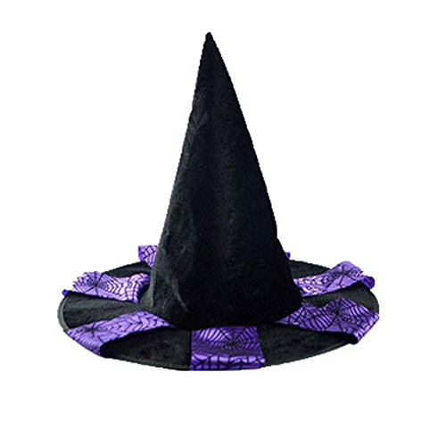 Adult Womens Black Witch Hat For Halloween Costume Accessory Cap (Purple)