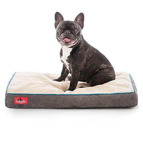- Brindle Soft Velour Pet Bed, Mocha Blue, Small 22 x 16