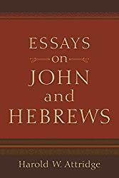 Essays on John and Hebrews