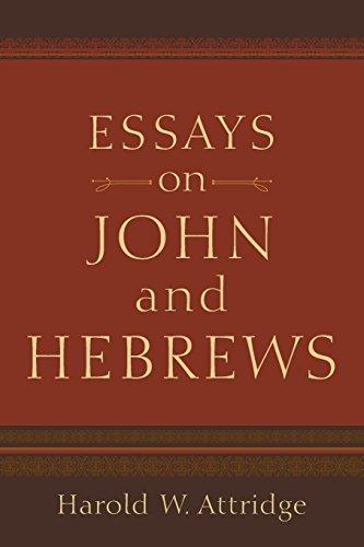 Essays on John and Hebrews