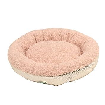 Cama para dormir para perros Alfombra para mascotas de terciopelo suave Máquina antideslizante Lavable para perros Rosa (Size : L70*70): Amazon.es: Coche y ...