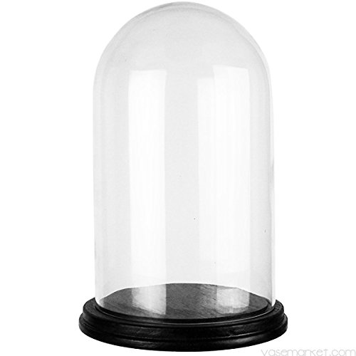 Glass Cloche (CYS Glass Cloche with Black Wood Base, 15