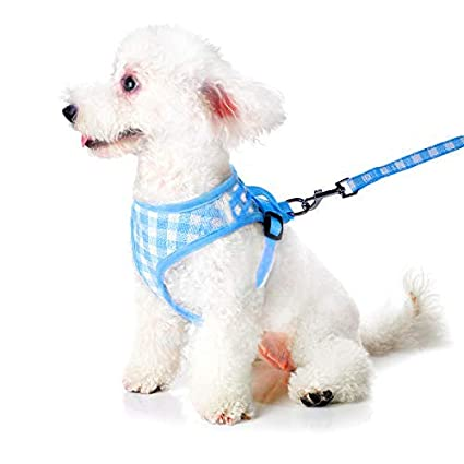 Amazon.com : Petetpet Puppy Harness and Leash, Breathable Adjustable