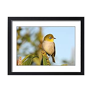 Framed 24x18 Print of RML00174 (14604730)