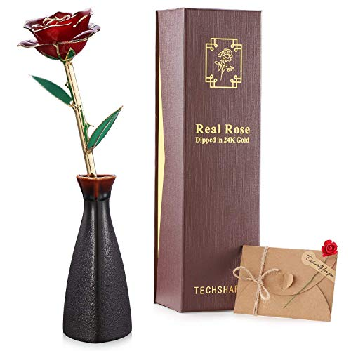 - TECHSHARE 24K Gold Rose Red, Real Rose Long Stem Love Forever Flower with Beautiful Porcelain Vase Unique Anniversary for Her Women Girlfriend Valentine Day Thanksgiving Best Wedding Birthday