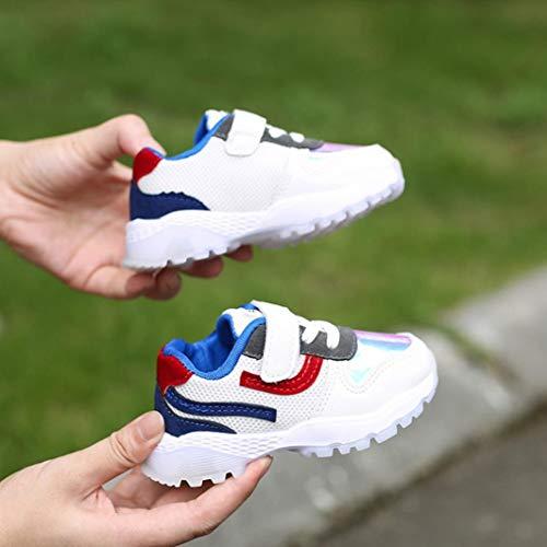 Niña zarlle Malla Sneakers Niños Y De Deportivas Azul Casual Antideslizantes Cumpleaños Bebé Niño Zapatos Para Zapatillas Niñas Transpirables Regalos Niña 1IBAx6qt