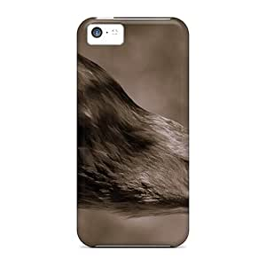 RobertWood GXd35039SNoz Cases For Iphone 5c With Nice Animals Eagle Appearance
