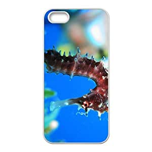 Peculiar Sea Horse Hight Quality Plastic Case for Iphone 5s