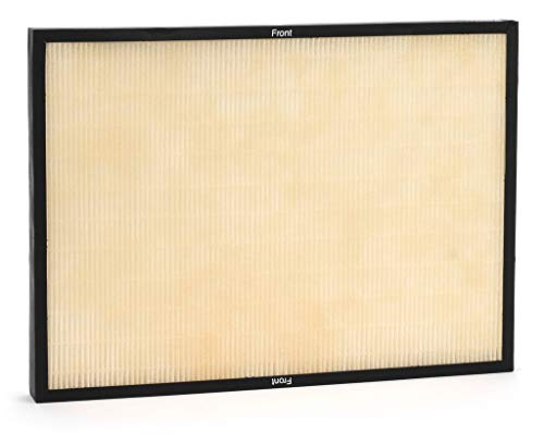Rabbit Air Genuine Classic BioGS Replacement HEPA filter for sale  Delivered anywhere in USA
