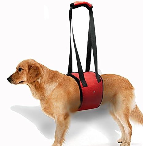 Doggie estilo Store rojo grande Arnés del perro polipasto Lift ...