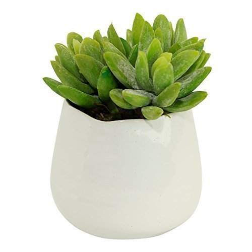 Small Faux Sedum Succulent in Round White Ceramic Planter - 4 x 4.5 Inches - Marmeda Decor Potted Artificial Plant in Glazed Clay Vase - Global Modern Decor for Home or Office