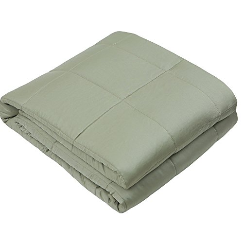 Adjustable Weighted Blanket (48''x72'', 20lbs for 170 - 230 lbs individual, Spearmint) for Adults Women, Men, Children | Great for Autism, ADHD, Stress and Anxiety Relief |Fit Full or Queen Sized Bed