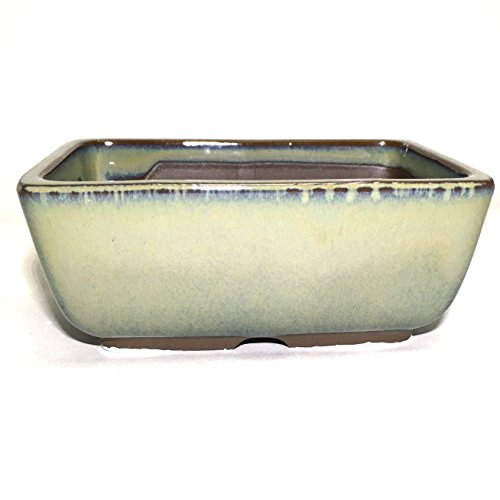 Bonsai Pot Ceramic Rectangle Round shaped corners Moss Green Glazed (4.75