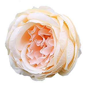 FANFLONA Silk Flowers in Bulk Wholesale 60 Flower Heads Silk Tea Rose Artificial Peony Flower Heads (Champagne) 43