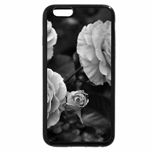iPhone 6S Case, iPhone 6 Case (Black & White) - Soft Coral Roses