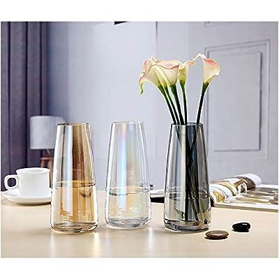 Fantastic Ryan Ins Modern Glass Vase Flower Vase Crystal Clear Decorative Vase for Home Office Decor Wedding Party