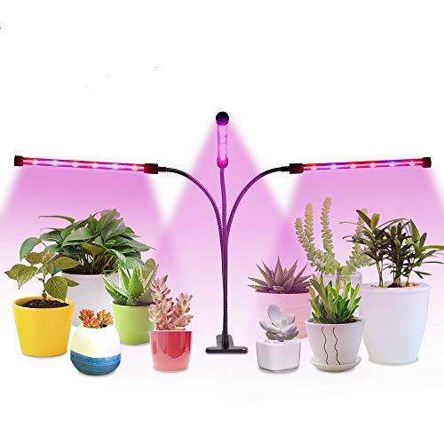 Led Grow Light for Indoor Plants(36W Triple Head with Adjustable Neck),Timer Built in Allow 4/8/12 Hours Auto Cycle Timing, Plant Grow Lights for Indoor Plants