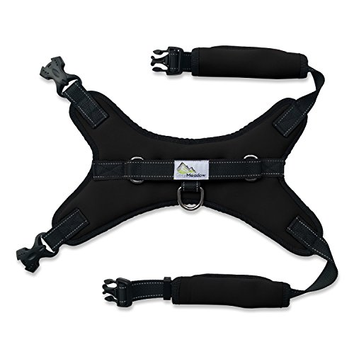 Most Secure Small Dog Harness