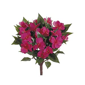 "13.7"" New Guinea Impatiens Bush Beauty (Pack of 6) 13"