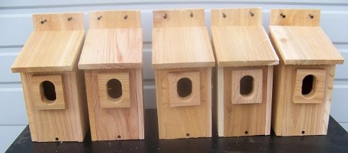 5 Bluebird House with Cedar And.peterson Oval Opening..cedarnest Review