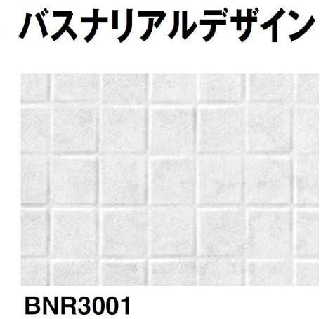 BNR3001