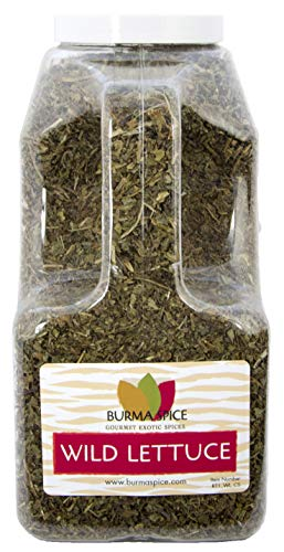 (Wild lettuce leaf (100% Kosher Lactuca Virosa) l Natural for pain relief and sleep aid l 10 Ounce l)