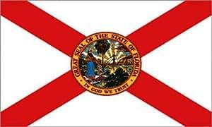 Freeshipping - 100 piezas 3 x 152,4 cm poliéster EE.UU.---Bandera de Connecticut #F209