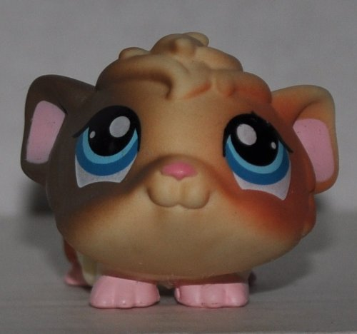 Guinea Pig #1418 (Cream/Rust, Blue Eyes) - Littlest Pet Shop (Retired) Collector Toy - LPS Collectible Replacement Figure - Loose (OOP Out of Package & Print)
