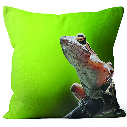 (Nine City Frog Resting on a Branch Home Decorative Throw Pillow Cover,HD Printing Square Pillow case,26