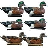 Avian-X Top Flight Wigeon Duck Hunting Decoys 8084