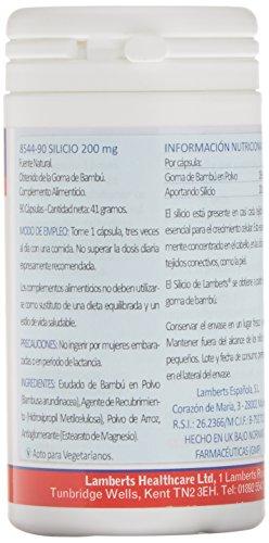 Lamberts Silicio 200 mg - 90 Tabletas: Amazon.es: Salud y cuidado personal