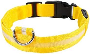 collier pour chien jaune