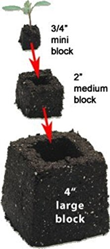 Nesting Soil Blocks