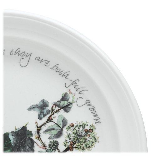Portmeirion Holly and Ivy Salad Plates, Set of 6